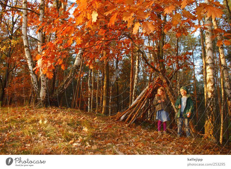 ich tarzan du ... Mensch Kind Natur Baum Pflanze Mädchen Haus Tier Wald Herbst Leben Spielen Umwelt Freiheit Landschaft Junge