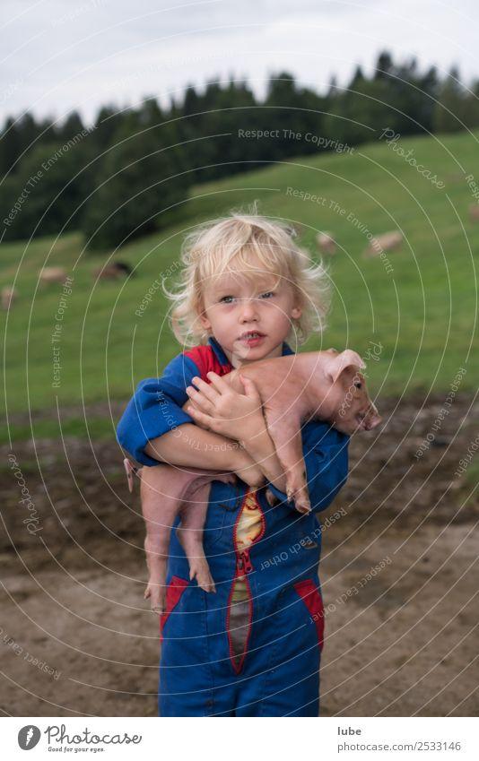 Schwein gehabt 2 Landwirtschaft Forstwirtschaft Kleinkind Mädchen 1 Mensch 3-8 Jahre Kind Kindheit Tier Nutztier Tierjunges Umarmen Tierliebe Freundschaft
