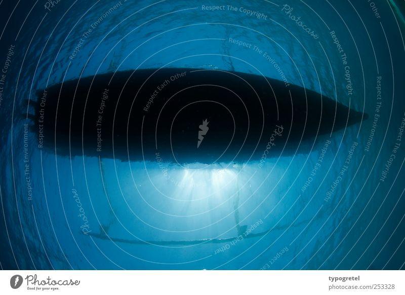 down under Ferien & Urlaub & Reisen Meer tauchen Wasser Fischerboot blau ruhig Wasserfahrzeug unten Unterwasseraufnahme Silhouette Perspektive Im Wasser treiben