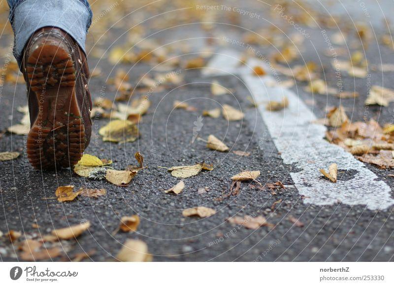 Fuß Straße Herbst Pfeil Mensch Blatt laufen