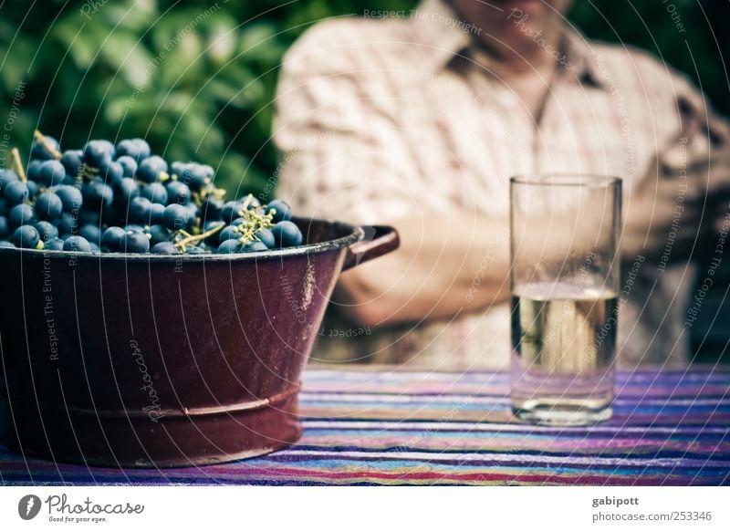 Reife Früchtchen Haus Gesundheit Garten Wohnung Zufriedenheit Glas Ernährung Getränk Lebensfreude trinken Wein Wohlgefühl Picknick gemütlich Alkohol ländlich