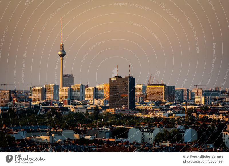 Skyline Alexanderplatz Hochhaus Plattenbau Berlin Berlin-Mitte Deutschland Europa Hauptstadt Stadtzentrum Sehenswürdigkeit Wahrzeichen Fernsehturm Ferne Fernweh