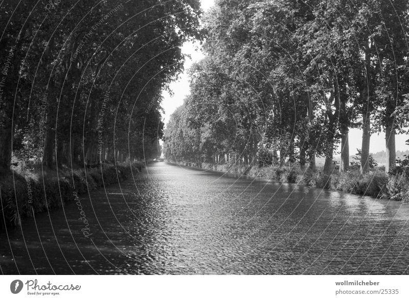 Canal du Midi Allee Baum Wasserfahrzeug Schattenspiel Abwasserkanal