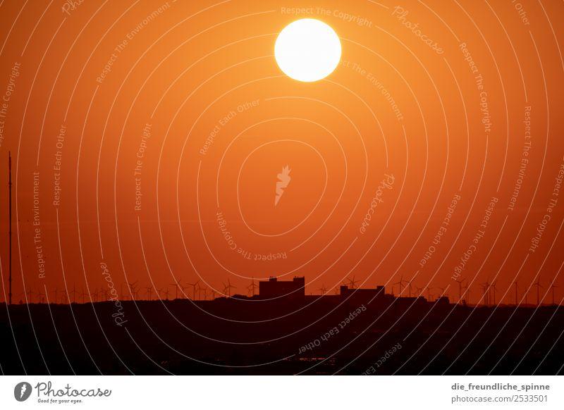Sonnenuntergang am Schöneberger Gasometer III Natur Landschaft Himmel Wolkenloser Himmel Sonnenaufgang Sonnenlicht Sommer Schönes Wetter Feld Berlin Deutschland