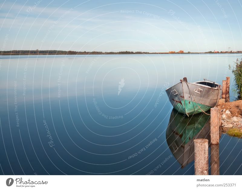Die Staun Himmel blau grün Wasser Landschaft Einsamkeit Wolken ruhig Herbst Küste Holz braun Horizont Zufriedenheit Schönes Wetter Ostsee