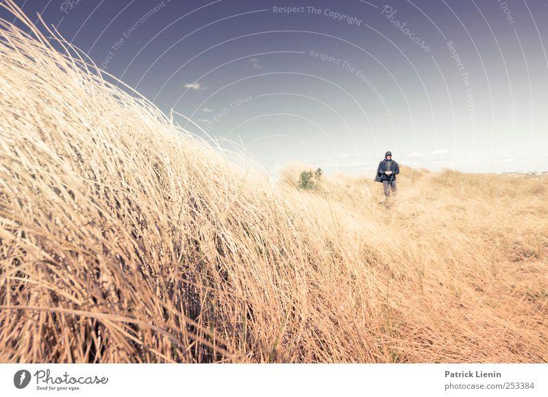 Rockin´ in the free world Mensch Himmel Natur schön Pflanze Ferien & Urlaub & Reisen Sommer Strand Meer Ferne Umwelt Freiheit Landschaft Küste Wetter Ausflug