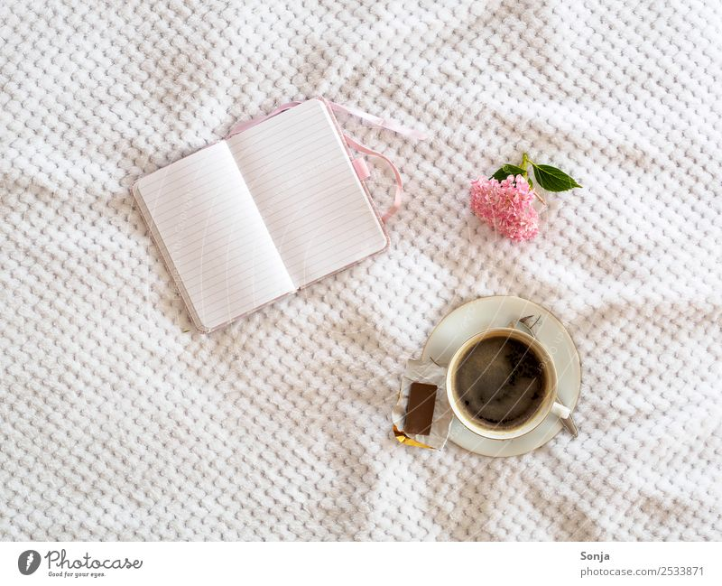 Kaffee, Tasse, Notizbuch, Blume weiß Erholung ruhig Freude Lifestyle Häusliches Leben Freizeit & Hobby Kreativität genießen Idee Getränk schreiben Frühstück