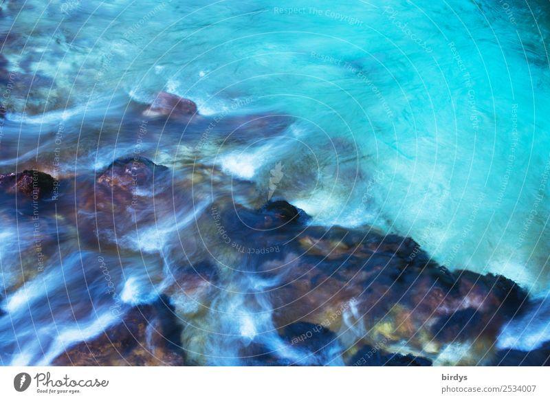 clear blue water Natur blau Farbe Wasser weiß Leben Bewegung Stein braun ästhetisch Idylle authentisch Geschwindigkeit nass Klima Fluss