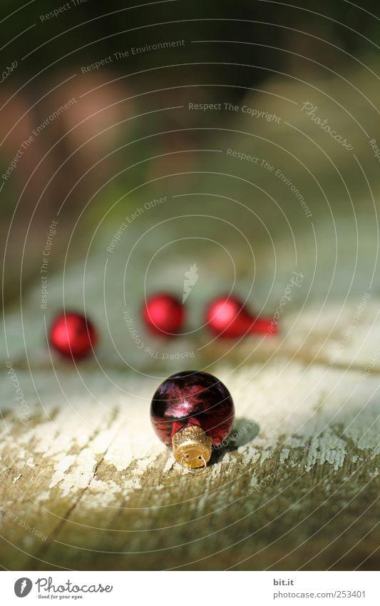 Kugellager II Natur Weihnachten & Advent alt rot Winter Farbe dunkel Holz klein Feste & Feiern glänzend Wohnung natürlich Häusliches Leben rund