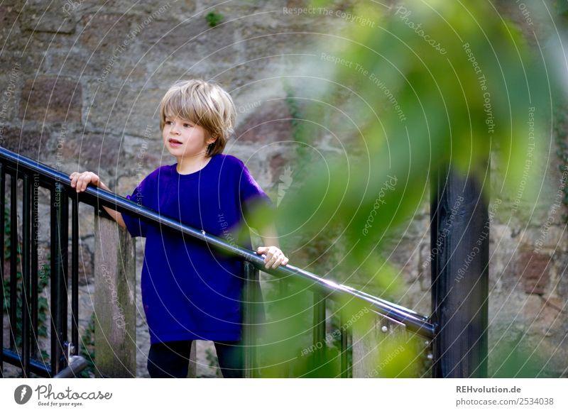 Kind auf dem Spielplatz Mensch maskulin Junge Kindheit 1 3-8 Jahre Pflanze Baum festhalten Spielen Fröhlichkeit Glück natürlich violett Freude Zufriedenheit