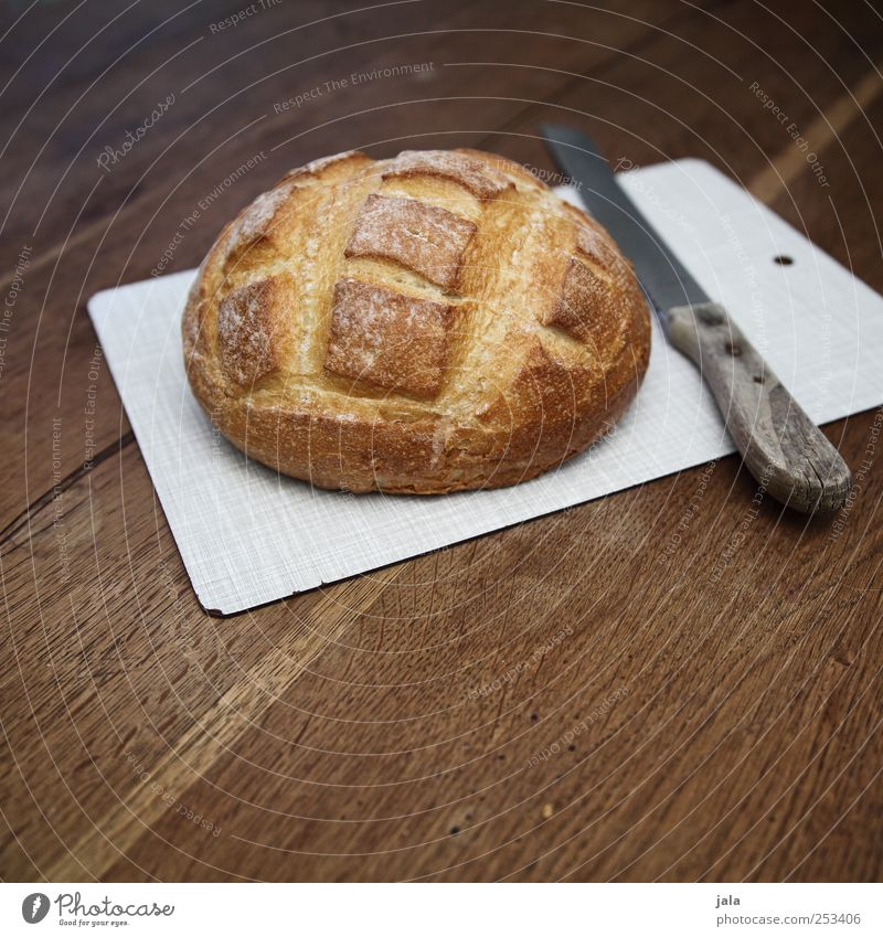 brot Lebensmittel Brot Ernährung Frühstück Abendessen Bioprodukte Vegetarische Ernährung Messer Schneidebrett lecker braun Appetit & Hunger Farbfoto