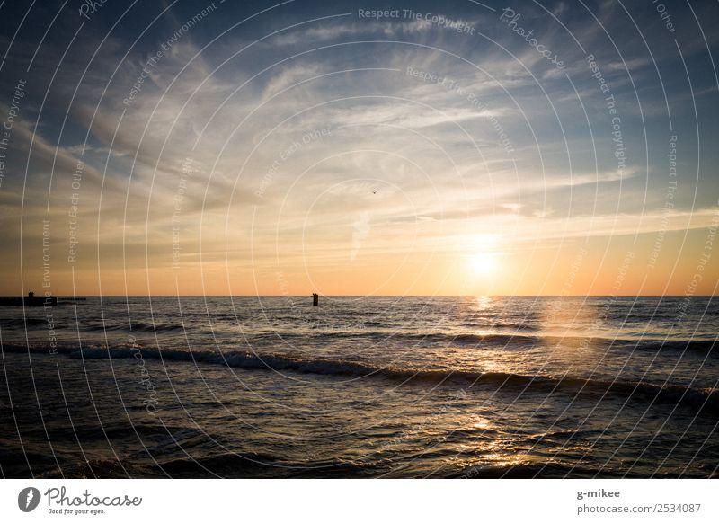 Sonnenuntergang an der Ostsee Umwelt Wasser Himmel Sonnenaufgang Sonnenlicht Sommer Strand Meer Ferne frei Unendlichkeit schön Wärme blau gelb Warmherzigkeit
