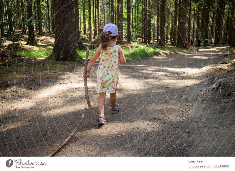 Wandern gehen Natur Sommer Wald entdecken laufen wandern klein Neugier grün Kraft Willensstärke Mädchen Wanderwg Leben stark Mut Farbfoto Außenaufnahme