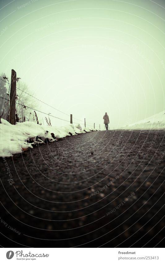 wegesrand Mensch Natur Winter kalt Schnee Wege & Pfade Nebel wandern trist Spaziergang Asphalt Fußweg Zaun frieren Fußgänger schlechtes Wetter