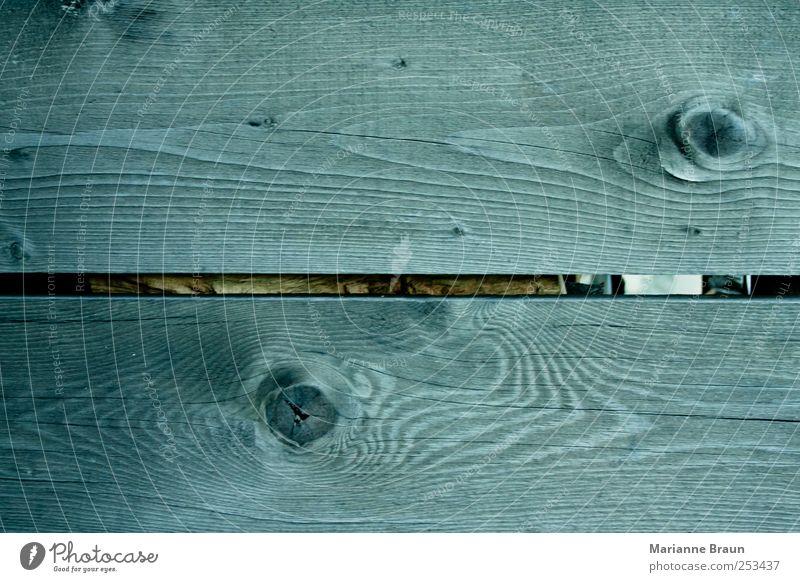 Holzschuppenwand alt grau Tanne Wand Holzwand Holzbrett Fuge Maserung Holzauge Ast Natur verwittert Strukturen & Formen Riss Hintergrundbild Aststelle natürlich