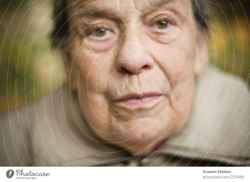 . Mensch Frau Erwachsene Weiblicher Senior Großmutter Kopf Gesicht alt authentisch Kraft Willensstärke Jacke kalt nah Außenaufnahme Porträt Nahaufnahme
