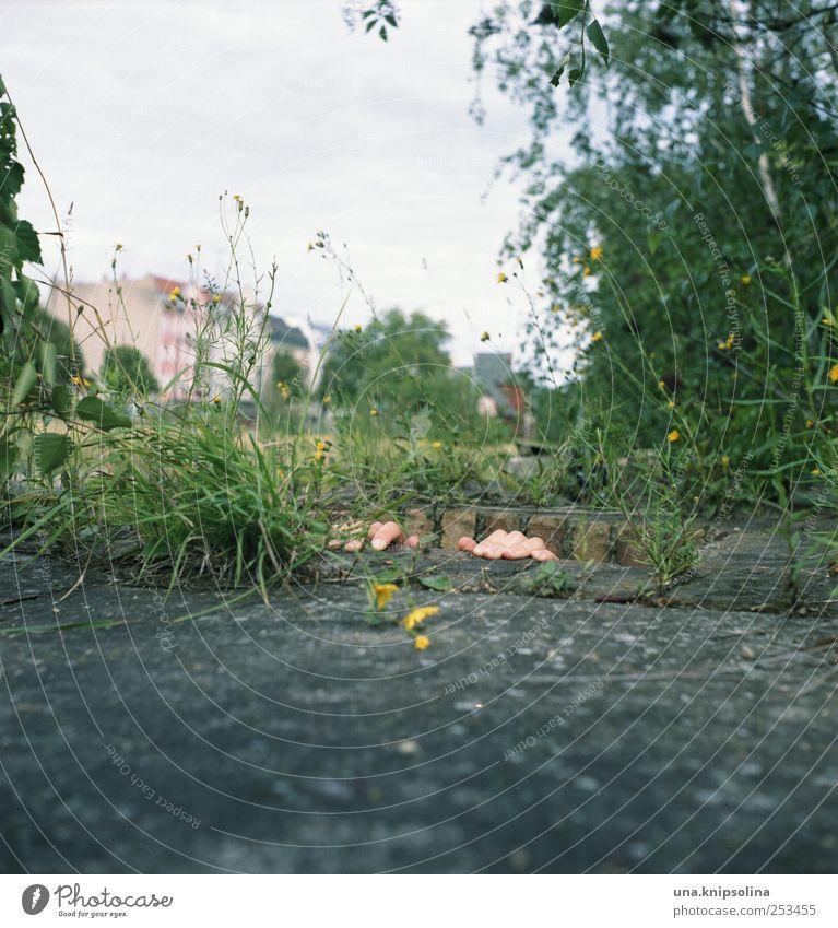 untergrund I maskulin Hand Finger 1 Mensch Umwelt Natur Pflanze Gras Industrieanlage Ruine Stein Beton berühren festhalten außergewöhnlich lustig Angst