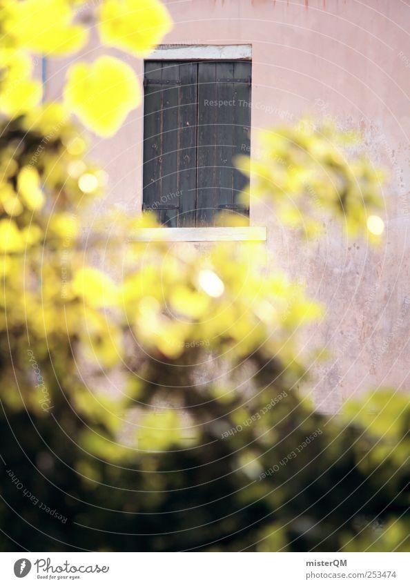 behind. Natur Haus Zufriedenheit geschlossen Armut Autofenster ästhetisch Italien verborgen Fensterladen Fensterbrett zurückziehen Fensterblick Fensterrahmen