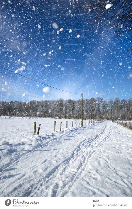 Schneegestöber Umwelt Natur Landschaft Himmel Winter Schönes Wetter Eis Frost Schneefall blau weiß Bewegung Vergänglichkeit Wege & Pfade Schneelandschaft