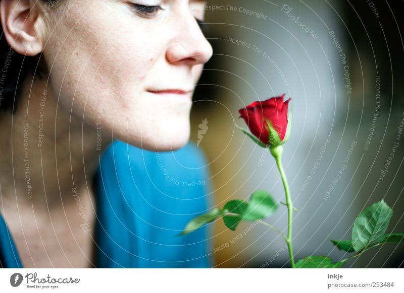 ich Dich auch ! elegant Glück Flirten Valentinstag Muttertag Geburtstag feminin Partner Erwachsene Leben Gesicht 1 Mensch Rose Blühend Duft Lächeln Blick schön