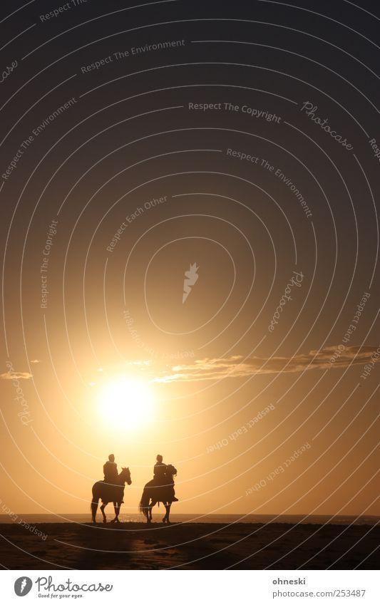 Ausritt Mensch Himmel Sonne Strand Tier Erholung Wege & Pfade Freizeit & Hobby Hoffnung Pferd Romantik Kitsch Warmherzigkeit Idylle Vertrauen Schönes Wetter