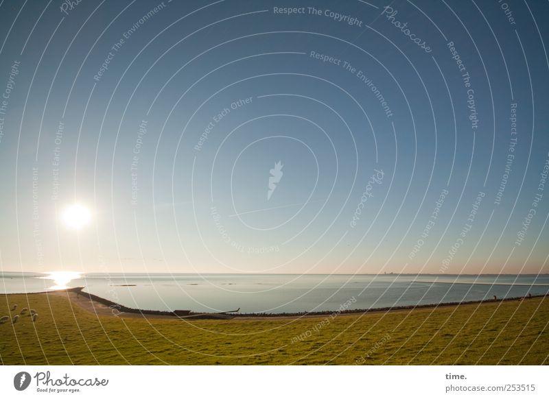 Sonnenwanderweg Natur Wasser grün Strand Meer Einsamkeit Erholung Wiese Umwelt Freiheit Landschaft Gefühle Gras Wege & Pfade Küste