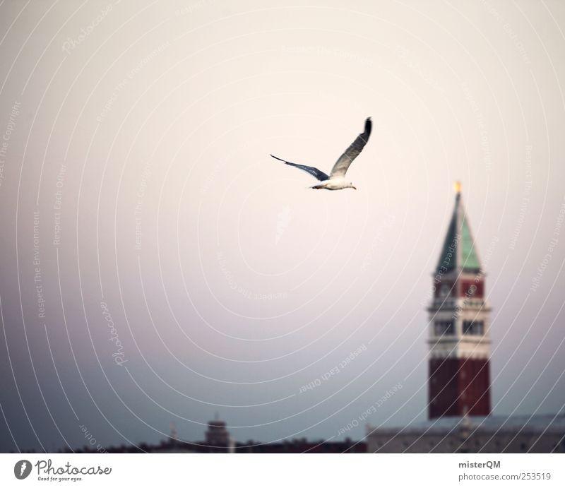Ausflug. Ferien & Urlaub & Reisen Kunst Vogel fliegen Tourismus ästhetisch Romantik Idylle Hafen Möwe Fernweh friedlich aufwachen Hafenstadt verschlafen
