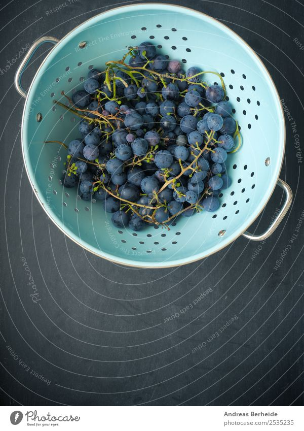 Weintrauben Frucht Dessert Bioprodukte Vegetarische Ernährung Diät Schalen & Schüsseln Sommer Natur lecker fresh dark green old red berry autumn agriculture