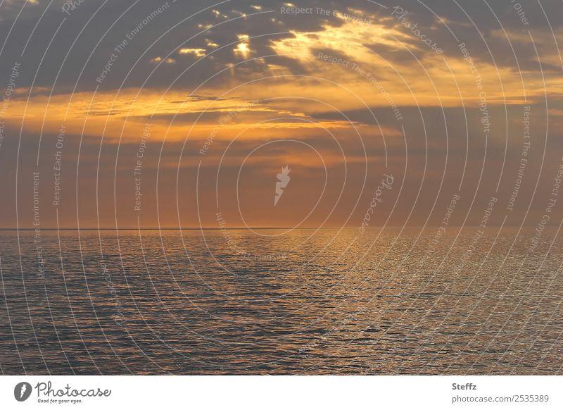 Abendlicht Umwelt Natur Urelemente Wasser Himmel Wolken Sonnenaufgang Sonnenuntergang Sonnenlicht Meer maritim schön braun orange Romantik Lichtstimmung