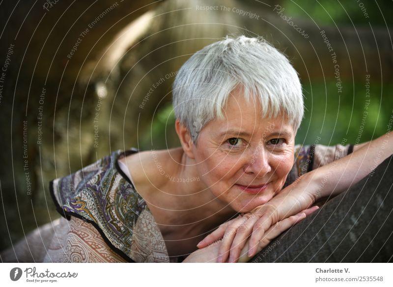 Entspannt Mensch feminin Frau Erwachsene Weiblicher Senior 1 45-60 Jahre Baum Park grauhaarig kurzhaarig Holz Lächeln leuchten liegen Blick authentisch nah