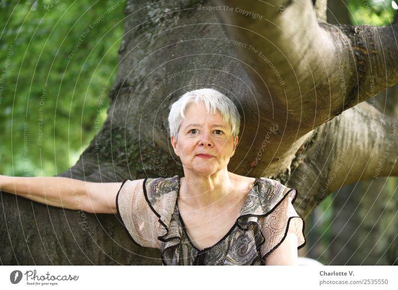 Im Baum Mensch feminin Frau Erwachsene Weiblicher Senior 1 45-60 Jahre Natur grauhaarig kurzhaarig Holz berühren Erholung Lächeln Blick authentisch elegant frei