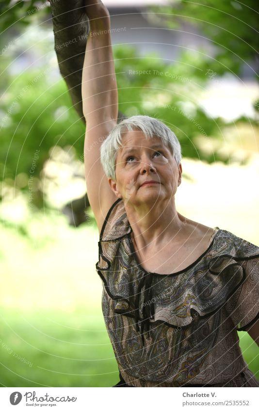 Blick nach oben Mensch feminin Frau Erwachsene Weiblicher Senior 1 45-60 Jahre Schönes Wetter Baum grauhaarig kurzhaarig Denken Erholung festhalten hängen