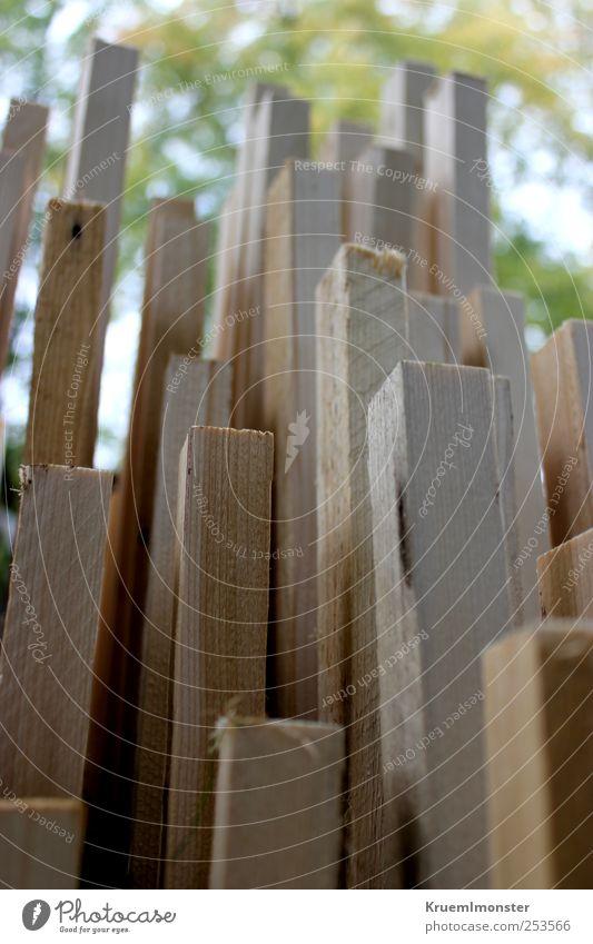 Himmel Natur Ferien & Urlaub & Reisen Wolken Haus Herbst Leben Umwelt Holz Architektur Garten Gebäude Wetter Horizont Erde