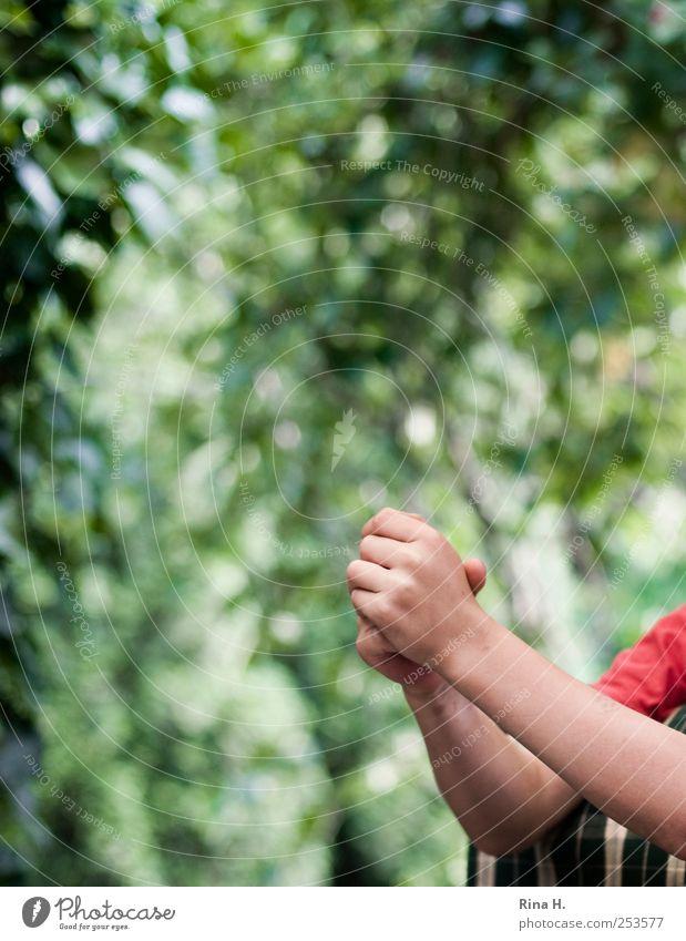 Kinderhände Mensch Natur Hand grün rot hell Kindheit Arme warten authentisch 8-13 Jahre aufstützen