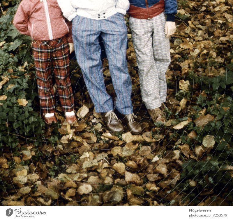 Kariert in den Herbst Mensch Kind Ferien & Urlaub & Reisen Baum Blatt Erholung Beine Freundschaft Zufriedenheit Tourismus Ausflug Fröhlichkeit Hose Jacke