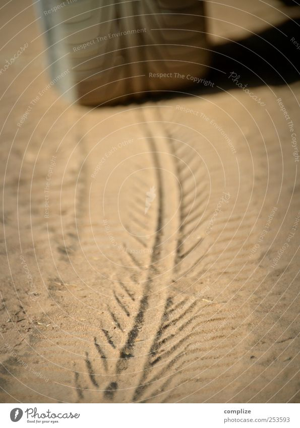 Profil Motorsport Fortschritt Zukunft Umwelt Erde Sand Feld Strand Straße Wege & Pfade Fahrzeug PKW Stein drehen braun Identität Präzision Reifenprofil Abdruck