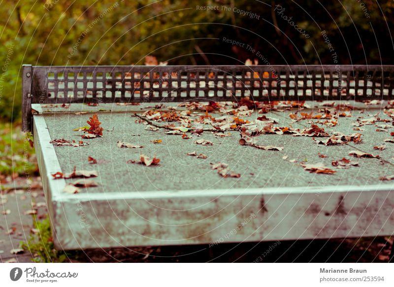 Winterpause Natur Blatt Herbst Spielen grau Metall Freizeit & Hobby dreckig Beton Pause Herbstlaub Gitter Oberfläche Spielplatz Aluminium Bodenplatten