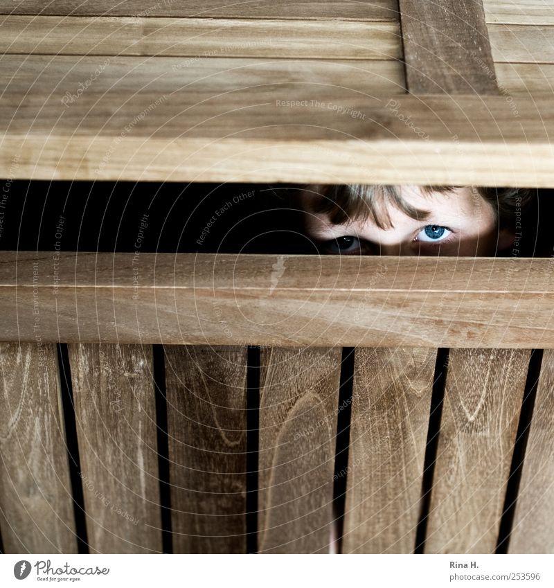 Angst Mensch maskulin Junge Kindheit Leben Auge 1 8-13 Jahre Spielen warten Neugier braun Freizeit & Hobby Freude Konzentration verstecken Versteck abwarten