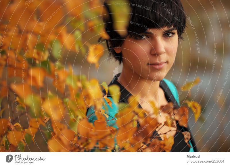Du brauchst dich nicht verstecken. Mensch Natur Jugendliche Baum Blatt ruhig gelb Herbst feminin braun warten Freundlichkeit Lächeln brünett Junge Frau