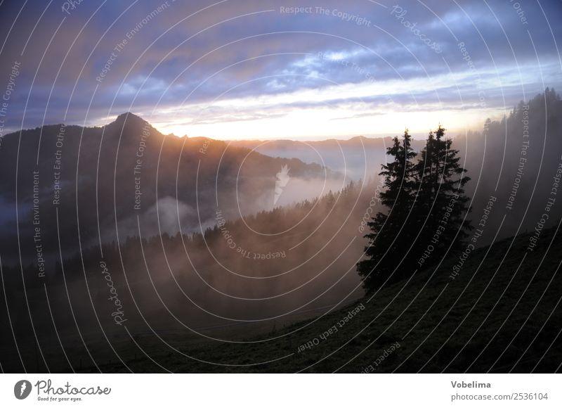 Abend an der Druesberghütte Berge u. Gebirge Natur Landschaft Wolken Nebel Baum Alpen blau braun gelb grau schwarz abend abendstimmung Sonnenuntergang