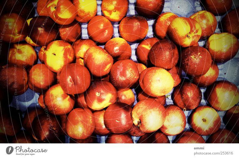Obstregal rot gelb Farbe Ernährung Lebensmittel hell Frucht gold verrückt rund saftig grell Nektarine