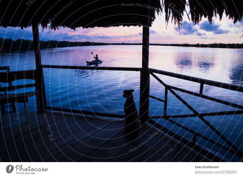 Dog watching girl in kanu at lagoon during sunset Ferien & Urlaub & Reisen Tourismus Ferne Sommer Sonne Strand Meer Insel Wellen Wassersport Natur Wolken