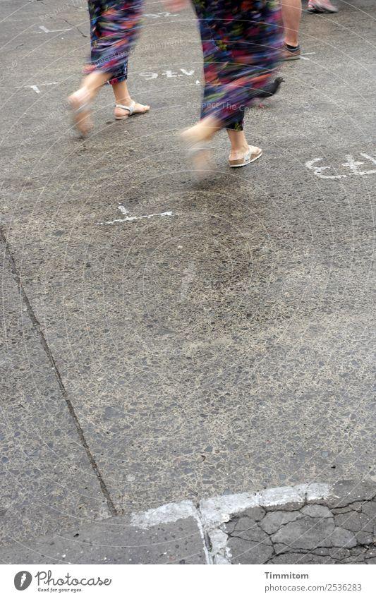 steinig   Gleichschritt halten Mensch 4 Krakow Kleid Schuhe Tier Taube Stein Ziffern & Zahlen Schilder & Markierungen gehen blau grau weiß Platz Farbfoto