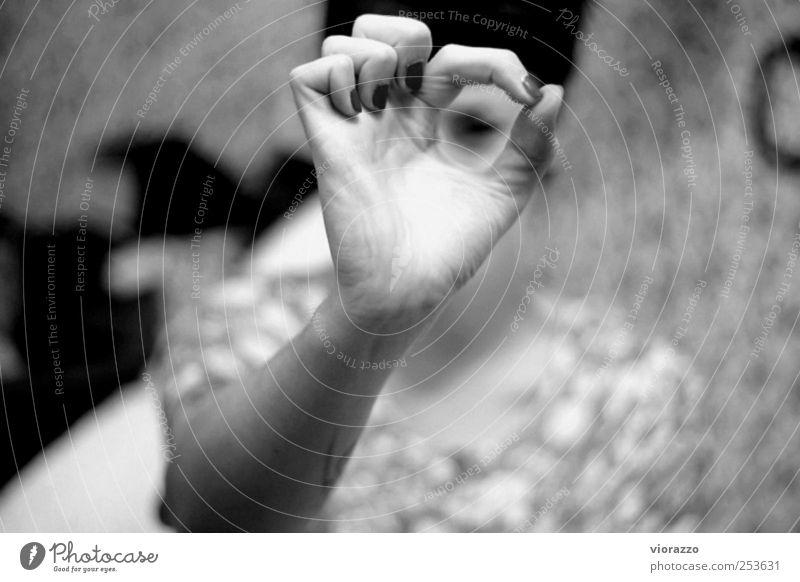 LOOK INTO IT. Mensch Hand ruhig feminin Leben sprechen Gefühle Kraft lernen Finger Schriftzeichen Kommunizieren Ziffern & Zahlen beobachten Neugier nah