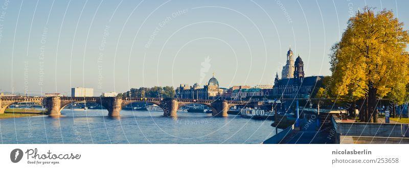 B@DD 11 | Dresden im Herbst Natur schön Baum Ferien & Urlaub & Reisen Haus Gebäude Park Ausflug Platz ästhetisch Brücke Zukunft Kirche Turm Häusliches Leben