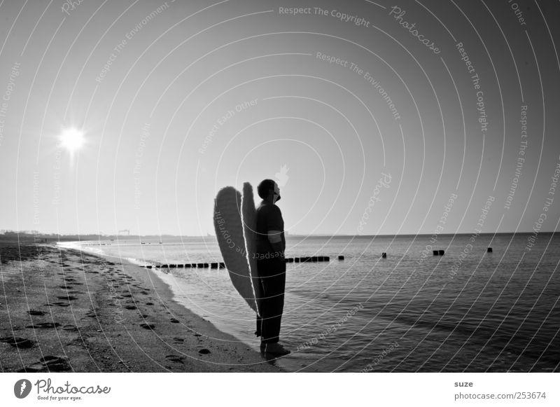 Engel Mensch Mann Wasser Meer Strand Erwachsene Freiheit Küste Religion & Glaube Horizont maskulin außergewöhnlich Flügel Hoffnung Engel 18-30 Jahre