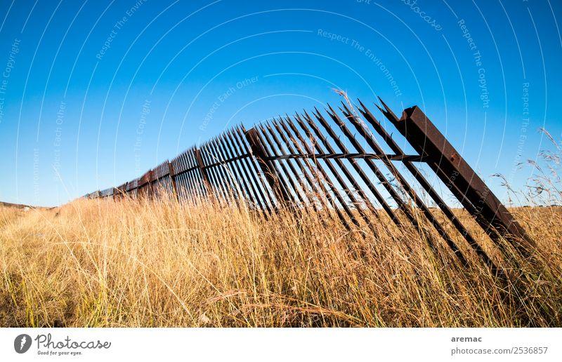 Alter Metallzaun im Gras Natur Landschaft Himmel Wolkenloser Himmel Herbst Schönes Wetter Wiese Südafrika alt blau gelb Gefühle Trauer metal fence grass