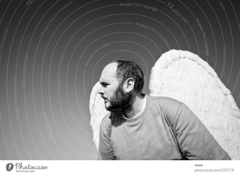 Engel Mensch Mann Erwachsene Freiheit Religion & Glaube maskulin außergewöhnlich Flügel Hoffnung 18-30 Jahre 30-45 Jahre Schutzengel Schatten Engelskostüm