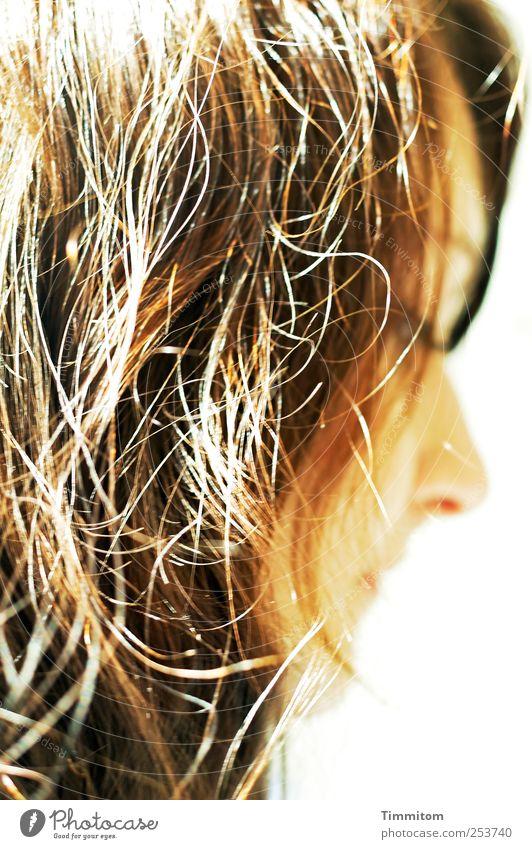 Good Girl! feminin Junge Frau Jugendliche Kopf 1 Mensch Haare & Frisuren brünett ästhetisch natürlich schön braun Gefühle Zufriedenheit selbstbewußt Kraft