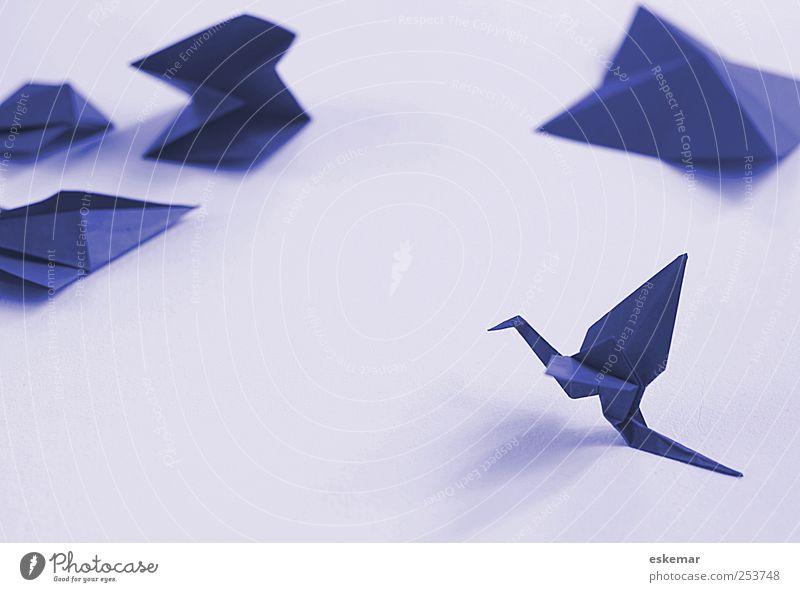Origami blau weiß Tier klein Vogel Freizeit & Hobby Design ästhetisch Papier authentisch Dekoration & Verzierung Spielzeug Zettel Basteln Kinderspiel Kranich
